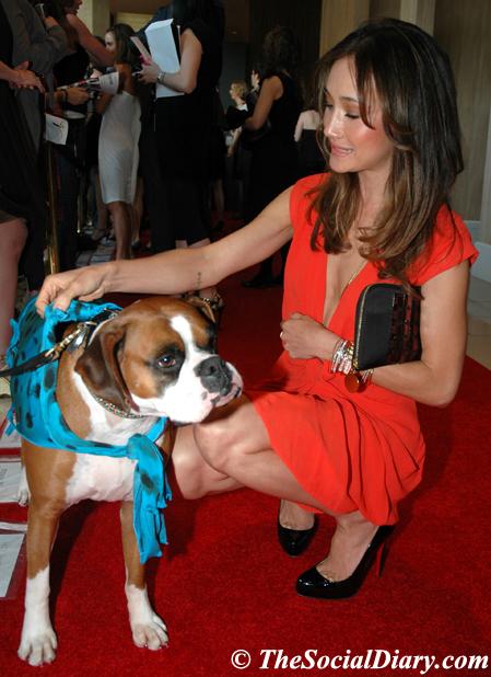 Maggie Q animal rights